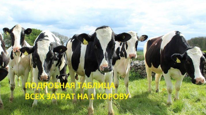 Затраты на 1 высокоудойную корову. Подробная таблица