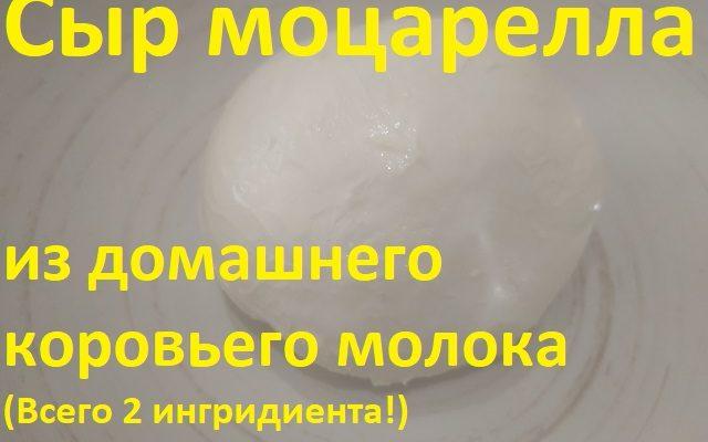 Сыр моцарелла из домашнего молока инструкция с фото