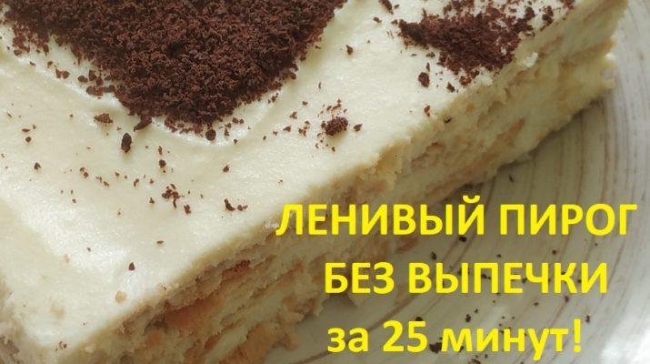 Быстрый ленивый пирог без выпечки за 25 минут. Молоко, сыр, сливки и печенье